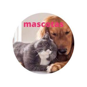 mascotas www.myeliexpress.com