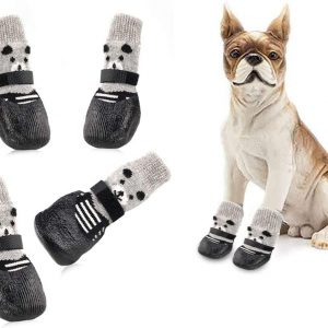 calcetines perros www.myeliexpress.com