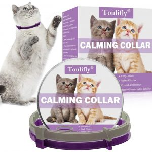 collar calmante gatos www.myeliexpress.com